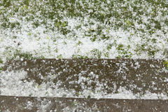 Sumer storm - Hail Stock Photography