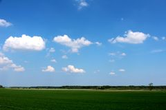 Sumer time landscape. Sumer time green landscape in sunny day Stock Image