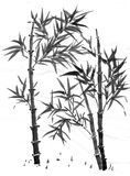 Sumi-e bamboo. Black and white bamboo illustration in Chinese art style royalty free stock photography