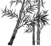 Sumi-e bamboos suibokuga Royalty Free Stock Photo