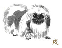 Sumi-e dog. Pekingese oriental ink painting with golden Chinese hieroglyph `dog`. Symbol of the new year. Original sumi-e art Royalty Free Stock Photography