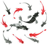 Sumi-e hand drawn fishes, black and white. Japan traditional sty Royalty Free Stock Photo