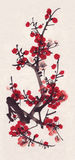 Sumi-e plum. Plum illustration in Chinese art style Stock Image