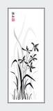 sumi orhid e Стоковые Фотографии RF