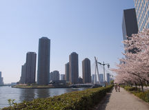 Sumida River Royalty Free Stock Image