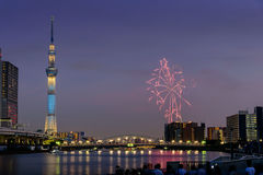 Sumida river Firework on summer in Japan Royalty Free Stock Image