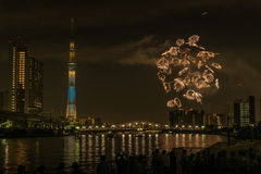 Sumida river Firework on summer in Japan Royalty Free Stock Images