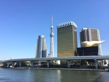 Sumidagawa flodsikt med himmelträdet och Asahi Tower i Tokyo Japan arkivfoto