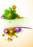 Summe colorful flowers. Background with place for text royalty free illustration