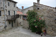 Summen in Kroatien Lizenzfreie Stockfotografie