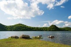 Summer干净的湖5 免版税库存图片