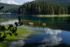 Summer黑湖,杜米托尔国家公园国家公园, Zabljak,黑山 免版税库存照片