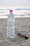 Summer. Water bottle and sun class on beach Stock Images