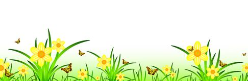 Summer. Banner with narcissus meadow scenery and butterflies. Copyspace for your text