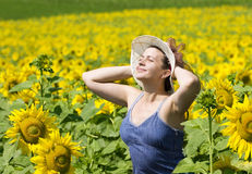Summer. Young beautiful woman in a sunflower field Royalty Free Stock Photos