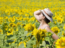 Summer. Young beautiful woman in a sunflower field Royalty Free Stock Images
