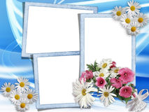 Summer. Card with a bouquet of daisies on a blue background Stock Images