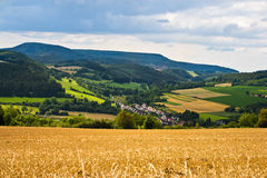 Summer. Field with yellow wheat in hdr Royalty Free Stock Photos