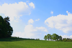 Summer. Green field and cloudy sky stock images
