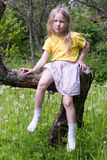 Summer. Little girl sitting on the tree and looking at camera on outdoor summer green grass background Stock Image