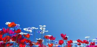 summer, Fotografia Stock