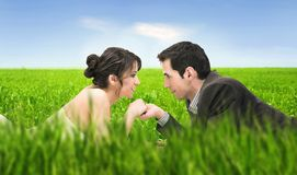 Summer. Wedding couple lying on summer meadow stock photos