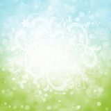 Summer abstract background. With bokeh lights and floral elements Royalty Free Stock Image
