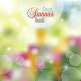 Summer abstract background of flowers and herbs. Summer Sunny background of flowers vector illustration