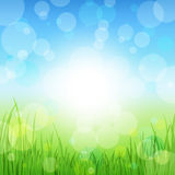 Summer Abstract Background with grass. Royalty Free Stock Photography