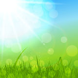 Summer Abstract Background with Grass. Vector. Illustration. EPS10 Stock Illustration