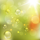 Summer abstract background with Lights Royalty Free Stock Photo