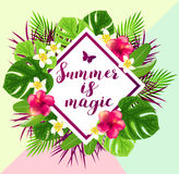 Summer abstract background. With red tropical flowers and green leaves. Summer is magic lettering Stock Photography