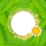 Summer Abstract Background. Vector Illustration. Royalty Free Stock Photos