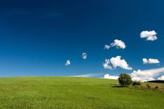 Summer abstract landscape. With small white clouds and tree royalty free stock image