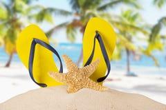 Summer accessories Stock Photos