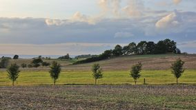 Summer afternoon in Moen. Striped rural lanscape. Royalty Free Stock Images