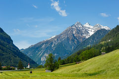 Summer Alpine country view Stock Photos