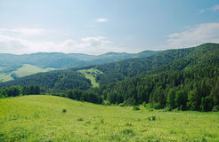 Summer alpine landscape with green wooded mountains Stock Photo