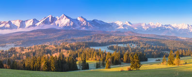 Summer alpine scene. Vivid alpine morning panorama. Blue sky over sunny mountain valley Royalty Free Stock Images