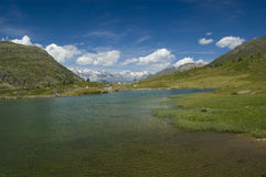 Summer alpine Seelandschaft Lizenzfreies Stockfoto