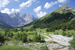 Summer in the alps Royalty Free Stock Image