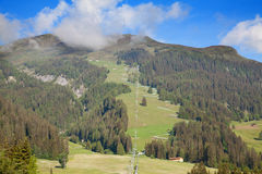 Summer in alps Stock Image