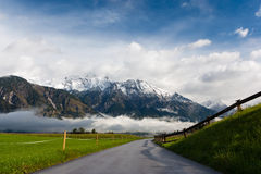 Summer in the Alps. Summer landscape in the Alps with snowcapped hills in the background Royalty Free Stock Photos