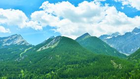 Summer Alps in sunny weather,France. Landscape of french Alps with vast evergreen forest in sunny weather stock photo