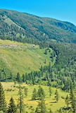 Summer Altay mountain Stock Images