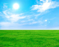 Free Summer And Green Field And Blue Sky Royalty Free Stock Photo - 30766245