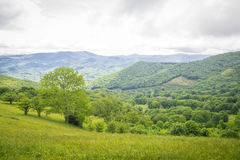 Summer Appalachian Trail Hike Stock Photo