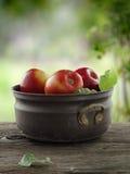 Summer apples Royalty Free Stock Photos