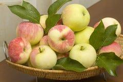 Summer apples closeup Stock Photos