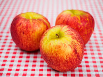 Summer apples Stock Photos